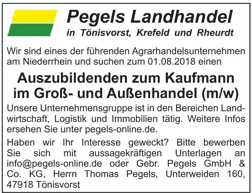 Gebr. Pegels GmbH & Co. KG